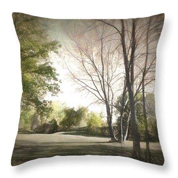 Autumn Landscape Throw Pillow by Rena Trepanier
