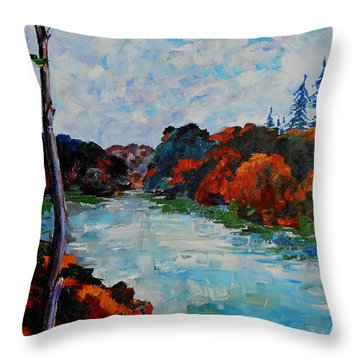 Autumn Landscape Throw Pillow by Shirley Heyn