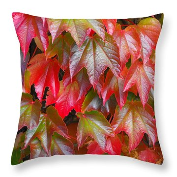 Autumn Leaves 01 Throw Pillow