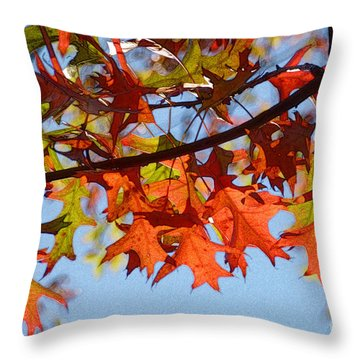 Autumn Leaves 16 Throw Pillow