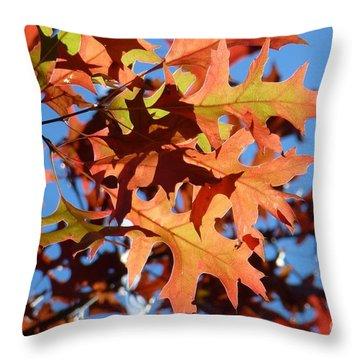 Autumn Leaves 17 Throw Pillow by Jean Bernard Roussilhe