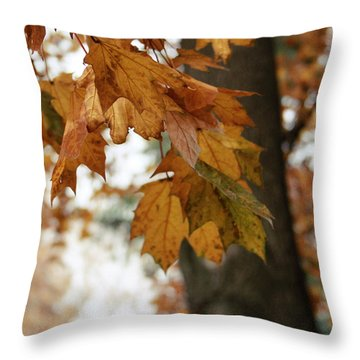 Autumn Leaves 2- By Linda Woods Throw Pillow
