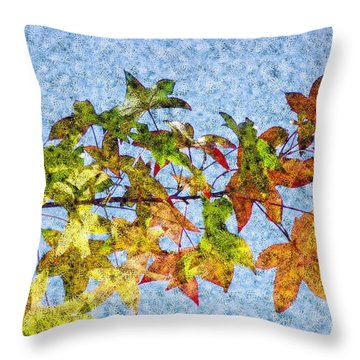 Throw Pillow featuring the photograph Autumn Leaves 2 by Jean Bernard Roussilhe