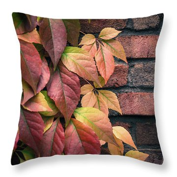 Throw Pillow featuring the photograph Autumn Leaves Against Brick Wall by Julie Palencia