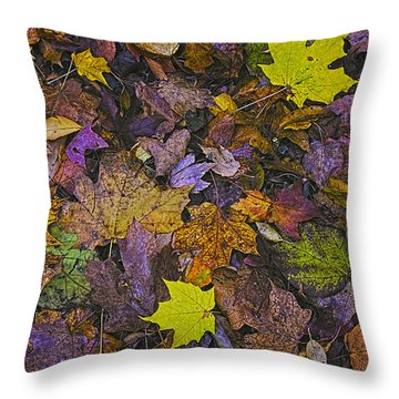 Autumn Leaves At Side Of Road Throw Pillow by John Hansen
