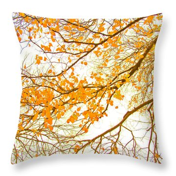 Calendar Throw Pillows