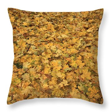 Autumn Leaves Canvas Throw Pillow by Carol Groenen