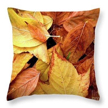 Autumn Leaves Throw Pillow by Carlos Caetano