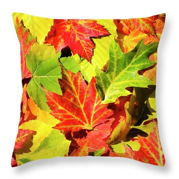 Throw Pillow featuring the photograph Autumn Leaves by Christina Rollo