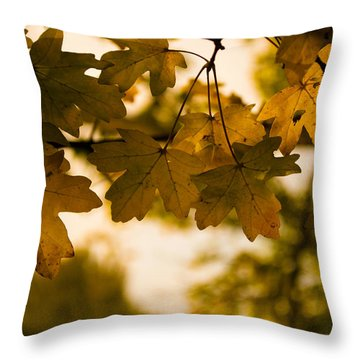 Throw Pillow featuring the photograph Autumn Leaves by David Isaacson