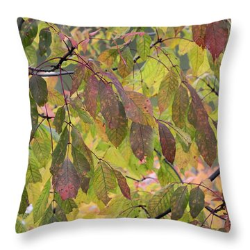 Throw Pillow featuring the photograph Autumn Leaves by Doris Potter