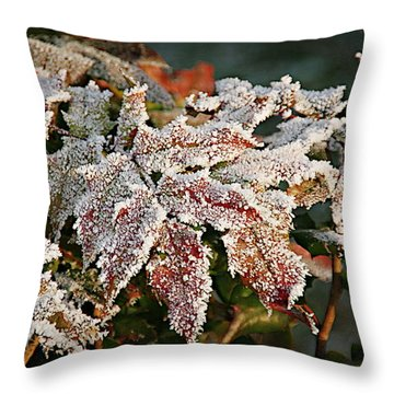 Autumn Leaves In A Frozen Winter World Throw Pillow by Christine Till