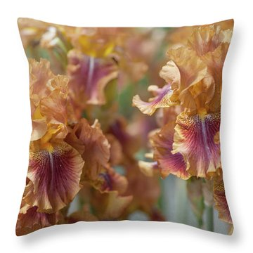 Autumn Leaves Irises In Garden Throw Pillow