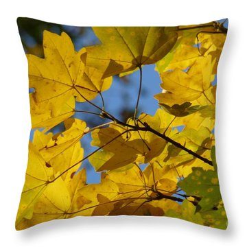 Throw Pillow featuring the photograph Autumn Leaves by Jean Bernard Roussilhe