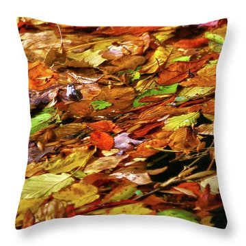 Throw Pillow featuring the photograph Autumn Leaves by Mitch Cat