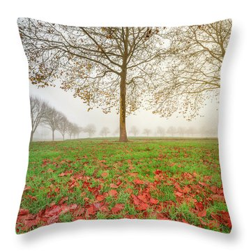 Throw Pillow featuring the photograph Autumn Leaves Near To Far Super High Resolution by William Lee