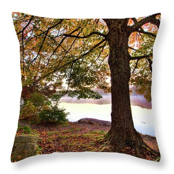 Throw Pillow featuring the painting Autumn Leaves On The Blue Ridge Parkway by Dan Carmichael