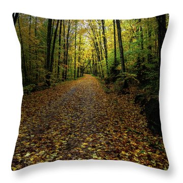 Throw Pillow featuring the photograph Autumn Leaves On The Trail by David Patterson