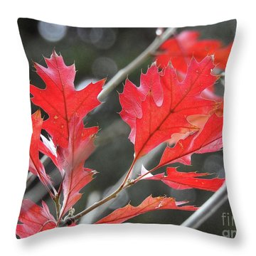 Throw Pillow featuring the photograph Autumn Leaves by Peggy Hughes