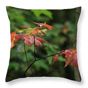 Autumn Leaves Throw Pillow by Randy Bayne