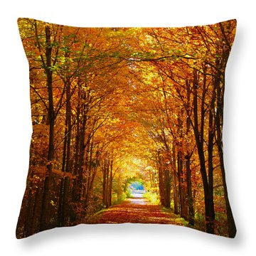 Autumn Light And Leaf Painting Throw Pillow