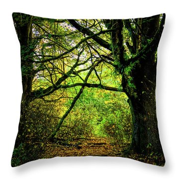 Throw Pillow featuring the photograph Autumn Light by David Patterson
