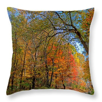 Throw Pillow featuring the photograph Autumn Light by Rodney Campbell