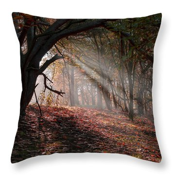 Throw Pillow featuring the photograph Autumn Light  by Scott Carruthers