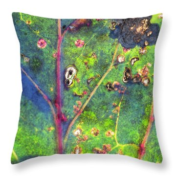 Autumn Magic Colors Throw Pillow
