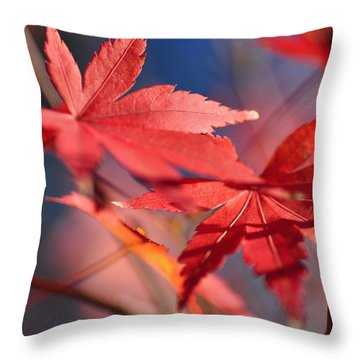 Autumn Maple Throw Pillow by Kaye Menner
