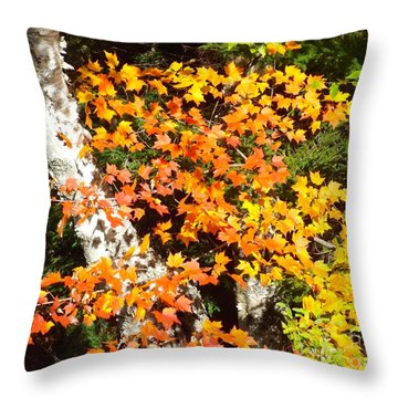 Autumn Maple Throw Pillow