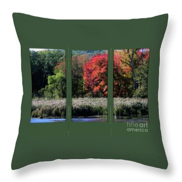 Autumn Marsh Through A Window Throw Pillow