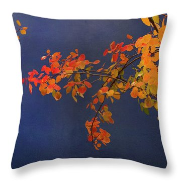 Throw Pillow featuring the photograph Autumn Matinee by Theresa Tahara