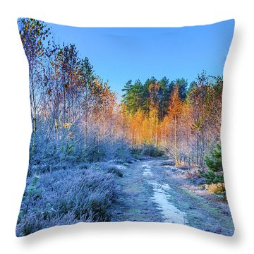 Throw Pillow featuring the photograph Autumn Meets Winter by Dmytro Korol