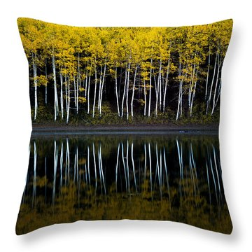Throw Pillow featuring the photograph Autumn Mirror by Dustin  LeFevre