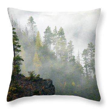 Autumn Mist Throw Pillow by Mike  Dawson