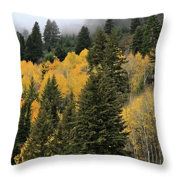 Autumn Mist, Owyhee Mountains Throw Pillow