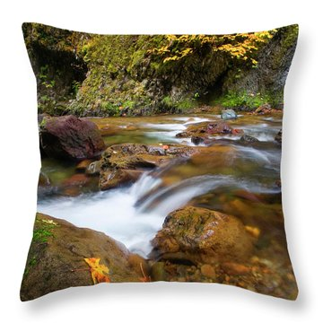 Throw Pillow featuring the photograph Autumn Moment by Mike Dawson