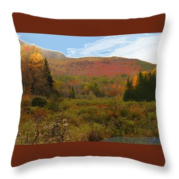 Autumn  Moose Bog Throw Pillow