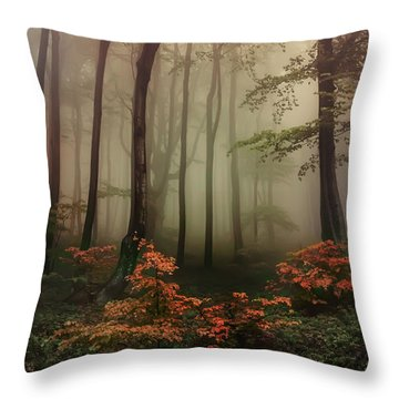 Autumn Mornin In Forgotten Forest Throw Pillow