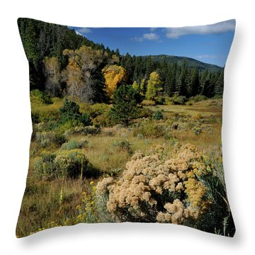 Throw Pillow featuring the photograph Autumn Morning In The Canyon by Ron Cline