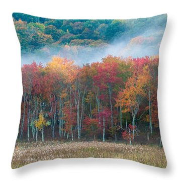 Autumn Morning Mist Throw Pillow by Brian Caldwell
