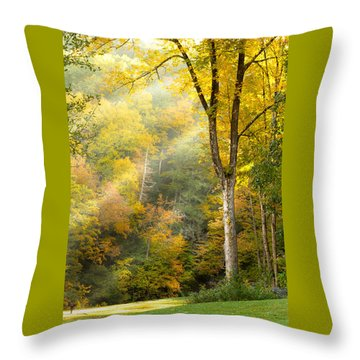 Autumn Morning Rays Throw Pillow by Brian Caldwell
