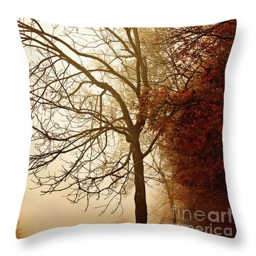 Throw Pillow featuring the photograph Autumn Morning by Stephanie Frey