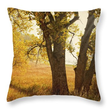 Autumn Morning Throw Pillow