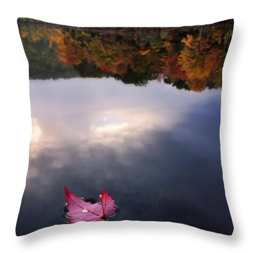 Autumn Mornings Iv Throw Pillow by Craig Szymanski