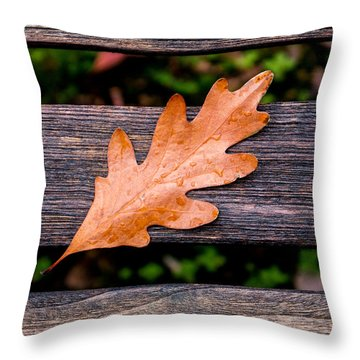 Autumn Oakleaf On Bench Throw Pillow