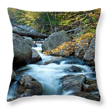 Autumn On Abol Stream Throw Pillow
