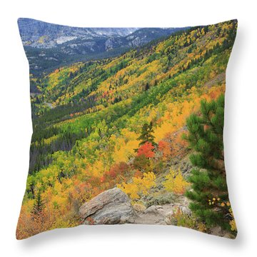 Throw Pillow featuring the photograph Autumn On Bierstadt Trail by David Chandler