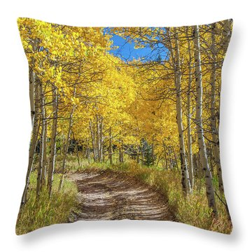 Autumn On Medano Pass Throw Pillow